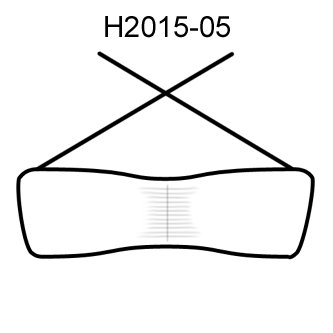 Ayiki H2015-05